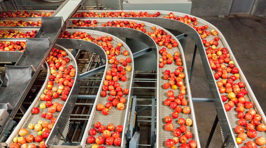 UV disinfection in food production